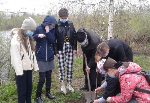 У Андреевского храма города Вологды высадили кусты сирени в память о Великой Победе